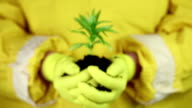 Man in yellow protective suit holds in hands soil and green young plant video