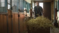 Man is rolling a cart with hay into a stable in order to feed horses. video