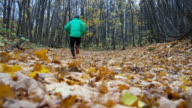 Man jogging cross country running on trail in forest. Training and exercising outdoors when cross country running in inspirational autumn landscape. Sports Motivation. video
