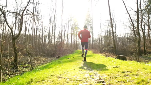 HD SLOW-MOTION Man Jogging In Nature video