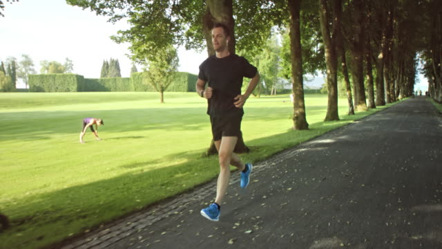 SLO MO TS Man jogging through a beautiful avenue in the park video