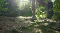 SLOW MOTION: Man jogging through the forest video