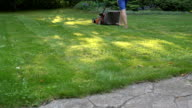 Man moves with lawnmower and mows green grass video