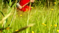 Man mowing grass using a scythe in blurred background video