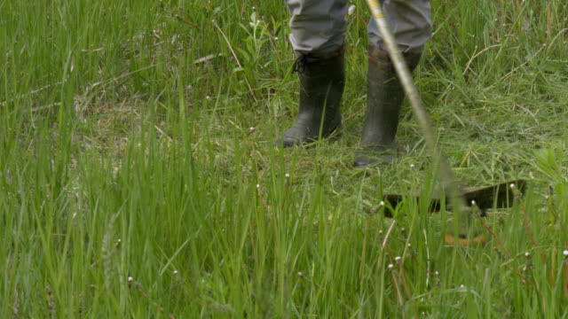 A man mowing the grass in the garden video