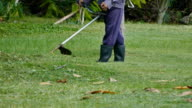 Man mowing the grass video