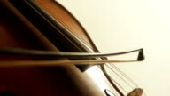 Man playing cello, hand close up video