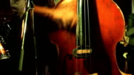 Man playing on the contrabass video