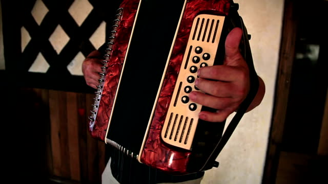 HD: Man Playing The Accordion video