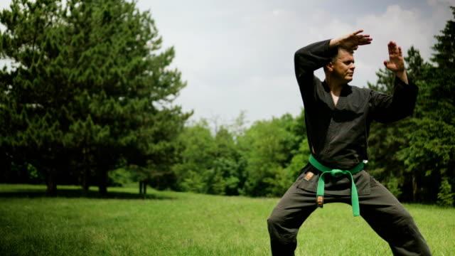 Man practicing karate video