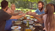 DS Man proposing a toast at the family picnic table video