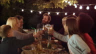 DS Man proposing toast to family members at barbecue dinner video