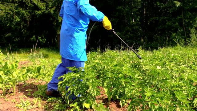 man protect potato garden using agricultural pesticide sprayer video