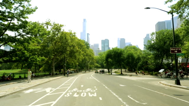 Man riding a bicycle. Point of view shot. Central park, New York video