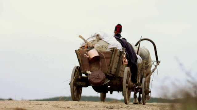 Man riding horse and carriage video