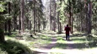 Man running in the Forest by the Road video