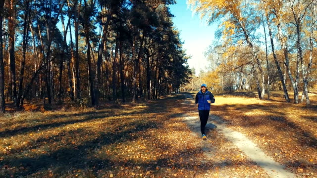 Man running in the morning forest. Sport video