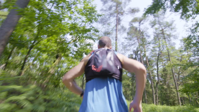 TS Man running on a forest trail video