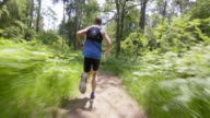 TS Man running through forest on sunny day video
