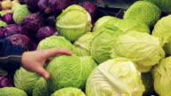 Man selecting cabbage savoy in grocery store video