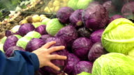 Man selecting red cabbage in grocery store video