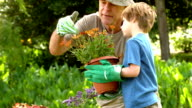 Man showing potted plant to grandson video