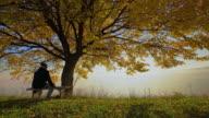 Man sitting on a bench under autumn tree video