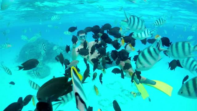 SLOW MOTION UNDERWATER: Man snorkeling and feeding exotic reef fish video