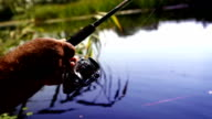 Man spins a coil on spoon-bait while fishing at the beautiful lake in summer video