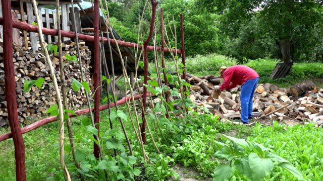 man split wood near country garden. Season work in woodshed. FullHD video