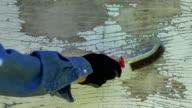 Man stripping peeling paint video