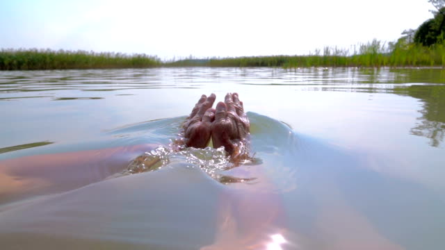 SLOW MOTION: Man swimming in the lake video