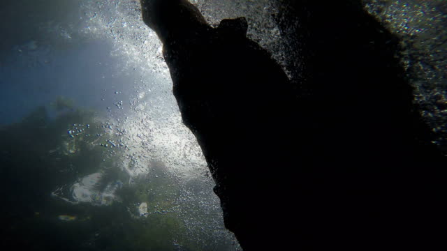 Man swimming in the sea above the camera video