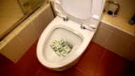 Man throws money in the toilet video