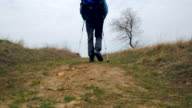 Man tourist in a blue jacket with a backpack and trekking poles walks outdoor video