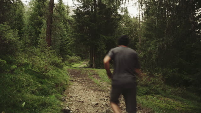 Man trail running in a forest area video