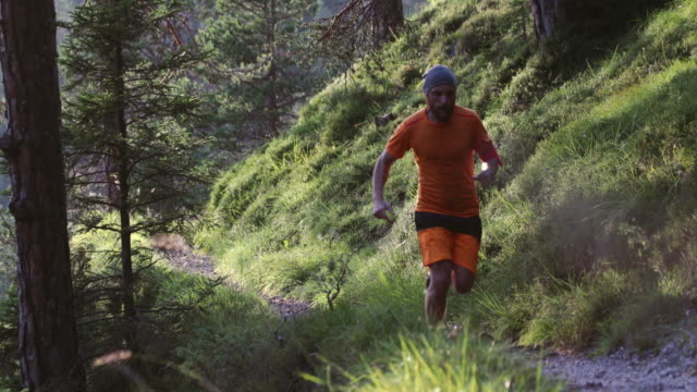 Man trail running in the forest up mountain video