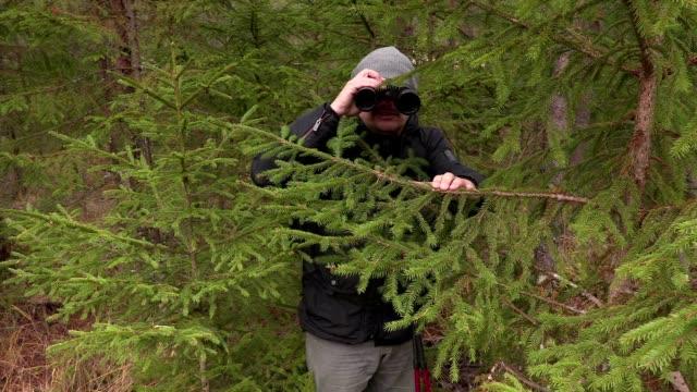 Man using binoculars near fir trees in the forest video