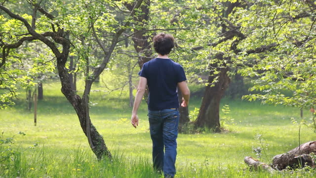 Man Walking in a Spring Meadow video