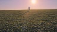WS Man walking in horizon video