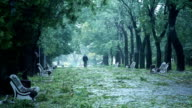 Man Walking In The Park During Stormy Dangerous Weather Slow Motion video