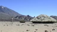 Man walking on the mountain desert - El Teide video