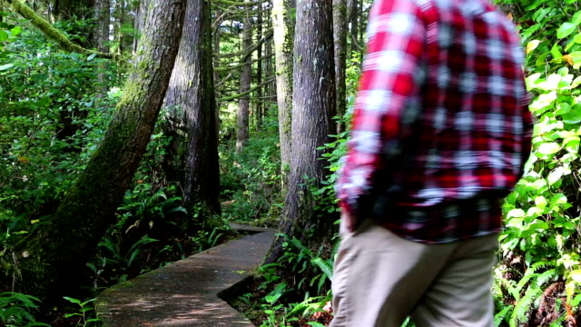 Man Walking Pacific Rim National Park Reserve Vancouver Island video