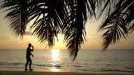 A man walks along the surf line. Sunset on the ocean. Beautiful View On Ocean Background Through The Palm Branches. video