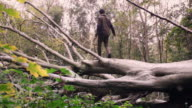 Man walks and plays on a fallen tree video