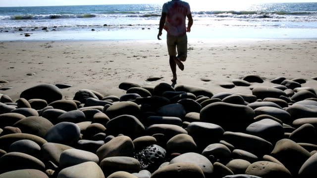 Man walks on shoreline rocks video