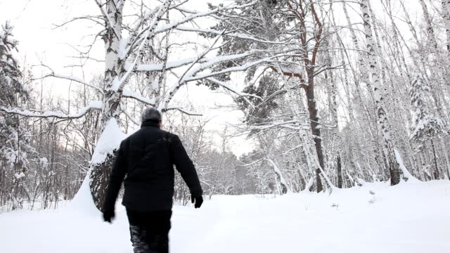 Man walks on the snowy woods video
