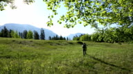Man walks through grassy meadow video
