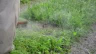 man wet pant grass cut video