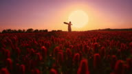 Man with a guitar among flowers at sunset video